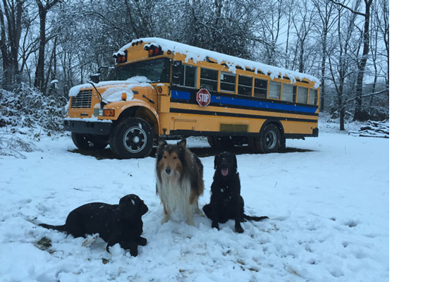 School Bus Conversion Turned Into West Virginia Airbnb