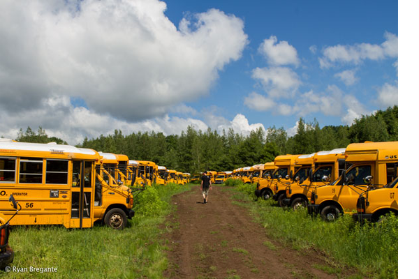 School Bus For Sale How To Find Them